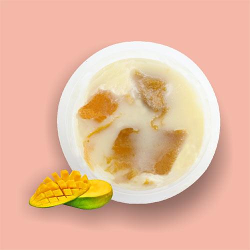 Pudding-Mangga